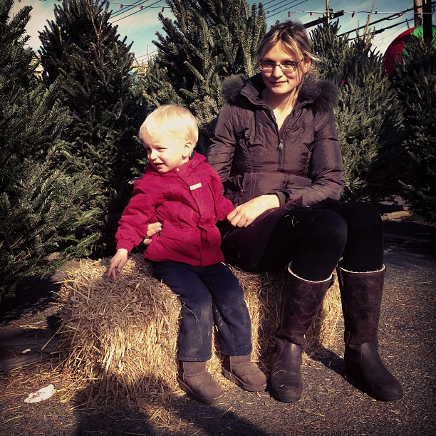 Picking New Year Tree (via Instagram)