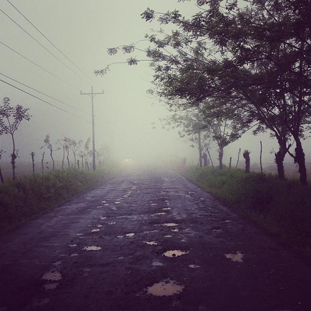 Fog (via Instagram)