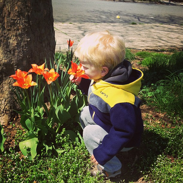 Smelling Tulips (via Instagram)