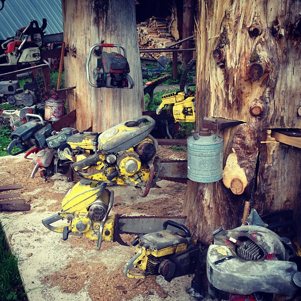 Chainsaw Collection (via Instagram)