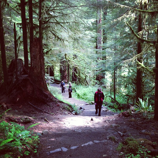 Sol Duc Trail (via Instagram)