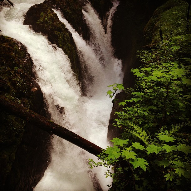 Sol Duc Falls (via Instagram)