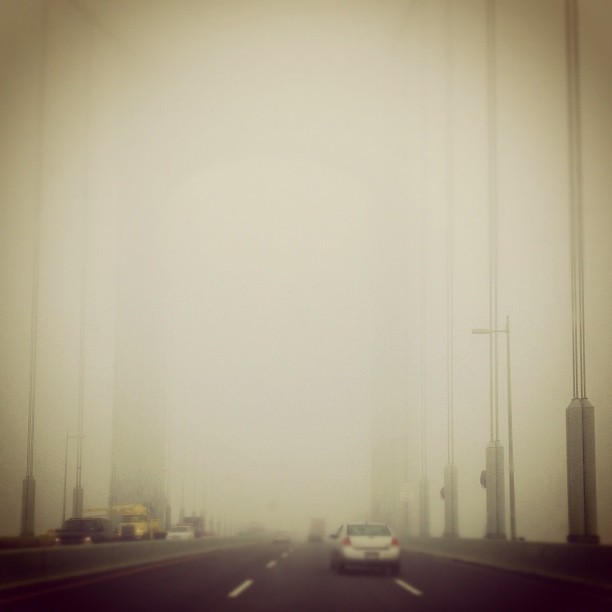 Fog (via Instagram)