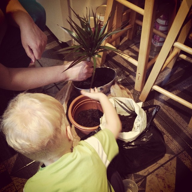Planting with Grandma (via Instagram)