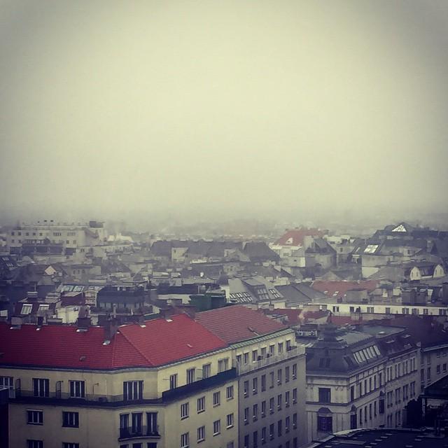 Foggy Vienna