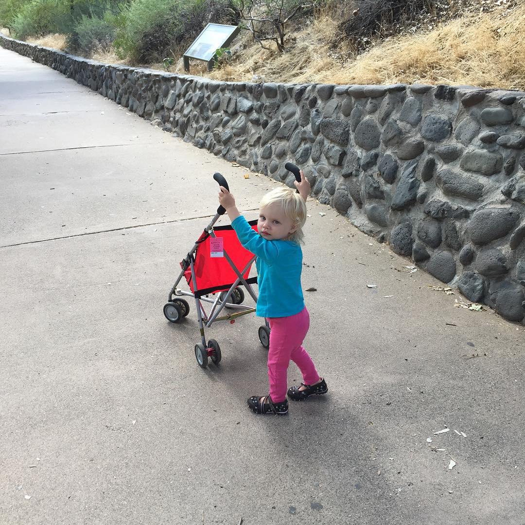 Useful Stroller
