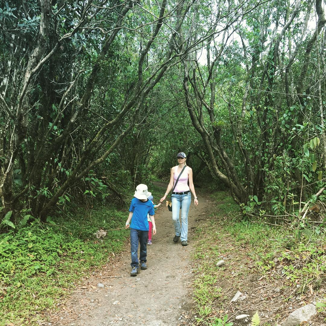Hike to Arenal