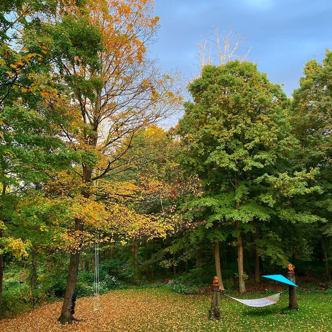 Connecticut Autumn