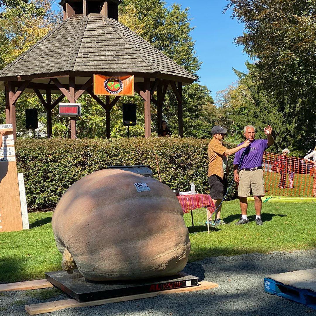 Giant Pumpkin Winner: 1845LB